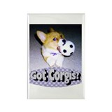 "Welsh Corgi ""Got Corgis?"" Rectangle Magnet"