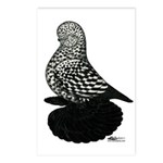 Splash Tumbler Pigeon Postcards (Package of 8)