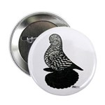 "Splash Tumbler Pigeon 2.25"" Button (100 pack)"