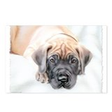 Ransom Fawn Puppy Postcards (Package of 8)
