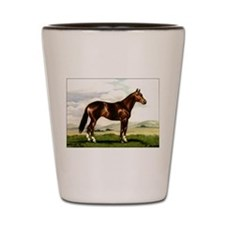 Stock Horse Mare Shot Glass