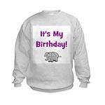 It's My Birthday!  Elephant Kids Sweatshirt