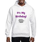 It's My Birthday! Elephant Hooded Sweatshirt