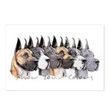 Great Dane Group Show Colors Postcards (Package of