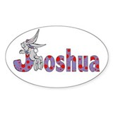 Name design for Joshua Oval Decal