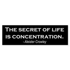 """Concentration"" Bumper Bumper Sticker"