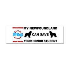 Save Your Honor Student Car Magnet 10 x 3