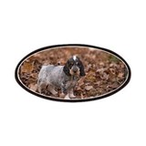 English Cocker Spaniel-4 Patches
