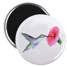 "Humming Bird 2.25"" Magnet (10 pack)"