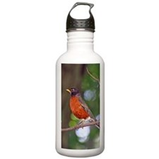 Red Robin Bird Water Bottle