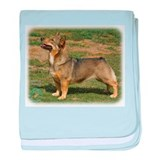 Swedish Vallhund 9J100D-23 baby blanket