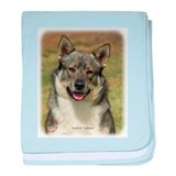 Swedish Vallhund 9K001D-15 baby blanket