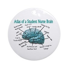 Nursing Student IV 2011 Ornament (Round)