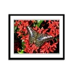 Butterfly on Red Flowers Framed Panel Print