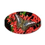 Butterfly on Red Flowers 38.5 x 24.5 Oval Wall Pee