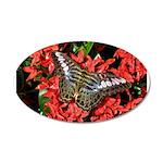 Butterfly on Red Flowers 22x14 Oval Wall Peel