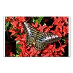 Butterfly on Red Flowers Sticker (Rectangle 10 pk)
