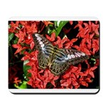 Butterfly on Red Flowers Mousepad