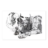 Great Dane Inseparable Postcards (8)