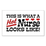 Hot Nurse Stickers