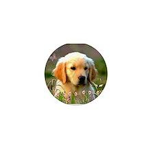 Austin, Retriever Puppy Mini Button