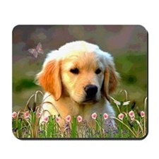 Austin, Retriever Puppy Mousepad