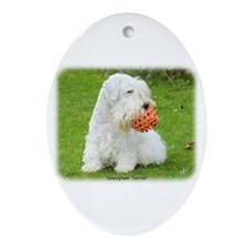 Sealeyham Terrier 8M003D-12 Ornament (Oval)