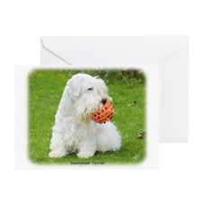 Sealeyham Terrier 8M003D-12 Greeting Cards (Pk of