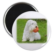"Sealeyham Terrier 8M003D-12 2.25"" Magnet (100 pack"