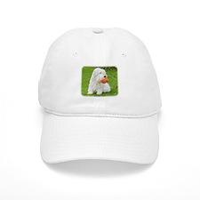 Sealeyham Terrier 8M003D-12 Baseball Cap