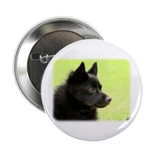 "Schipperke 9Y506D-026 2.25"" Button (100 pack)"