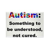 Understand Autistics Rectangle Magnet (10 pack)