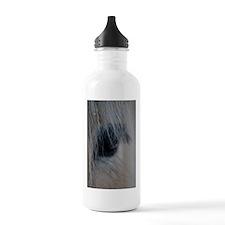 Unique Fjord horse Water Bottle