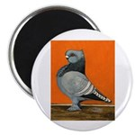 "Blue Blondinette Pigeon 2.25"" Magnet (100 pac"