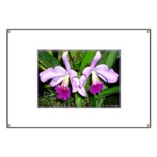 Orchid, floral, photo Banner