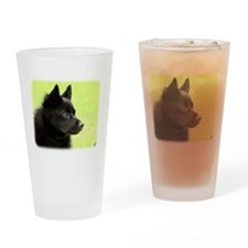 Schipperke 9Y506D-026 Drinking Glass