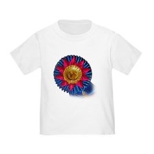 Horse Show Blue Ribbon Awards T