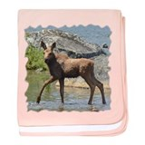 Calf at sunset baby blanket