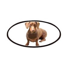 Red Short Hair Dachshund Patches