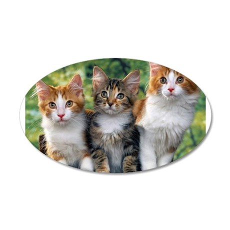 3 Cats 38.5 x 24.5 Oval Wall Peel