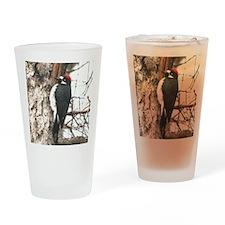 California Redheaded Woodpeak Drinking Glass