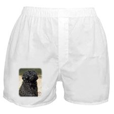 Portuguese Water Dog 9R016D-151 Boxer Shorts