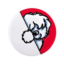 "Peeking Coton de Tulear 3.5"" Button (100 pack)"