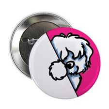 "Peeking Coton de Tulear 2.25"" Button (10 pack)"