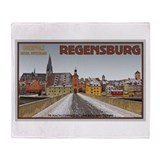 Regensburg Bridge Winter Throw Blanket