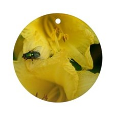 fly on flower Ornament (Round)
