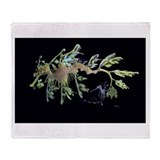 Leafy Seadragon with Weedy Se Throw Blanket