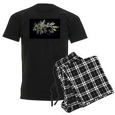 Leafy Seadragon with Weedy Se Pajamas