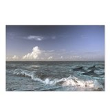 Cool Wave Postcards (Package of 8)