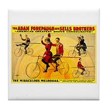 The Miraculous Melrosas Tile Coaster